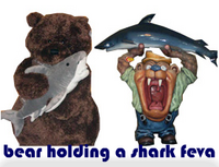 bear holding a shark feva